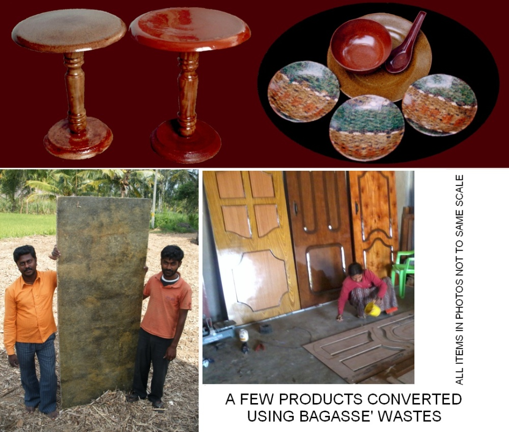 High Value Products using Bagasse' Wastes